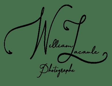 Signature 2021 WL